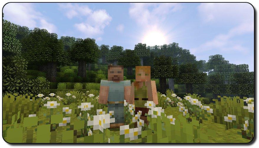 Pixel Reality
